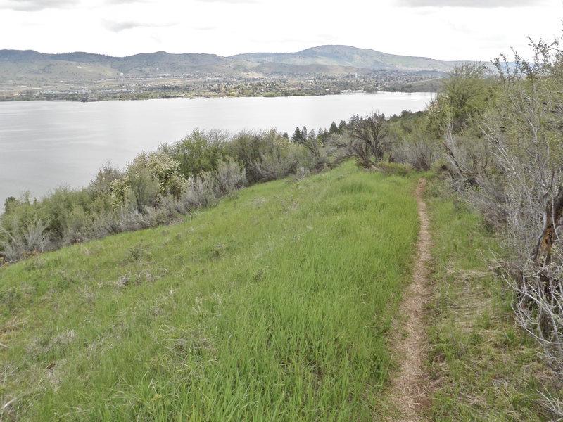 Klamath Ridgeview Trail