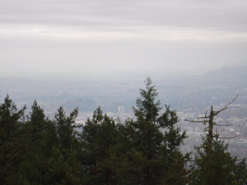 A view of Eugene from the top of Spencer Butte on a typical Oregon November day.