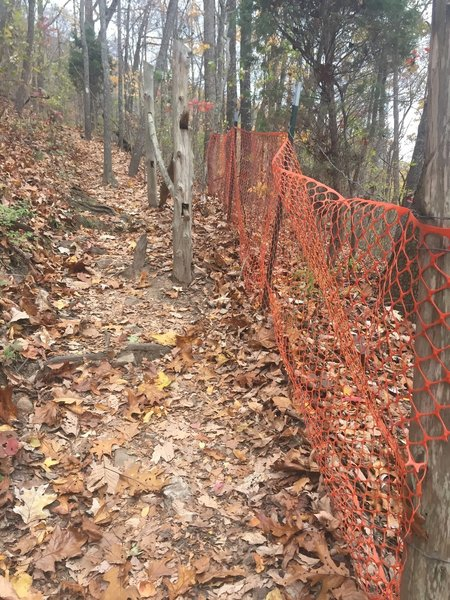 Some switchbacks on the West Overlook Trail have orange fencing due to erosion.