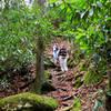 Hiking descend the Honey Creek Trail.