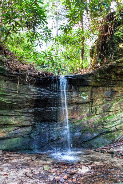 Falls along Honey Creek Trail