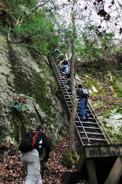 Stairs along Honey Creek Trail.