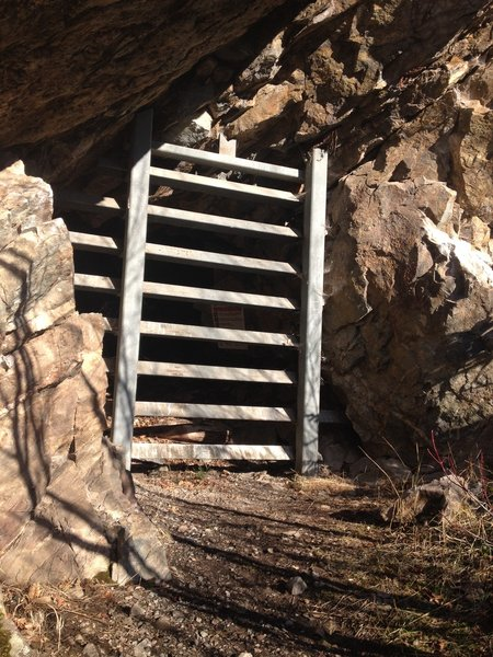 An old mine on the Sullivan Lakeshore Trail, the openings let the bats into the cave.