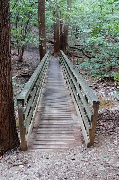 Bridge by Monkey Rock.