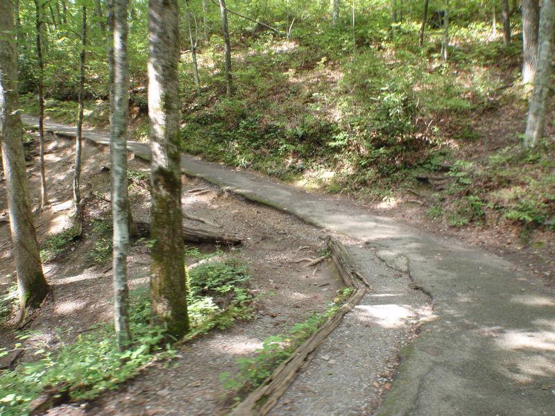 Laurel Falls Trail.