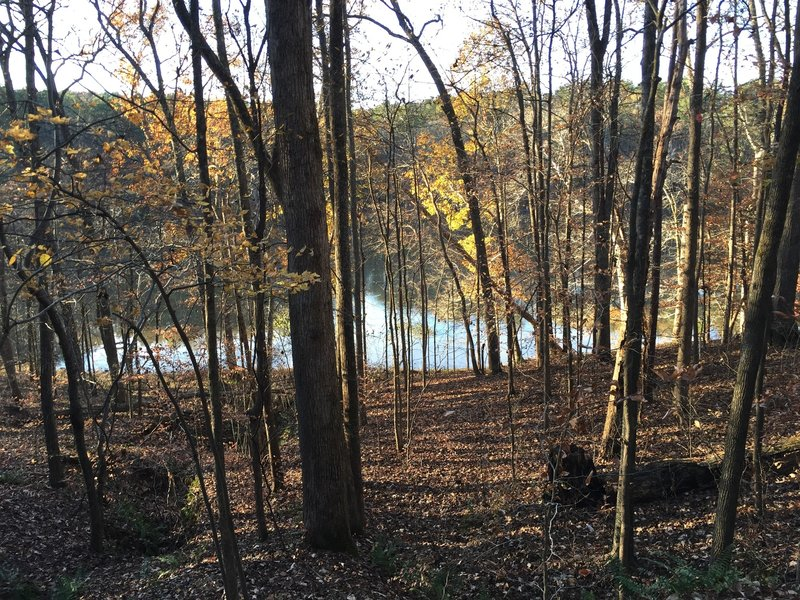Reedy Creek Lake, seen from Reedy Creek Multiuse Trail in Umstead State Park.