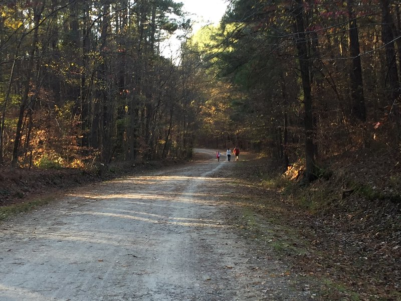 Reedy Creek Multiuse Trail in Umstead State Park.