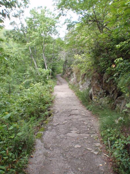 Laurel Falls Hiking Trail.