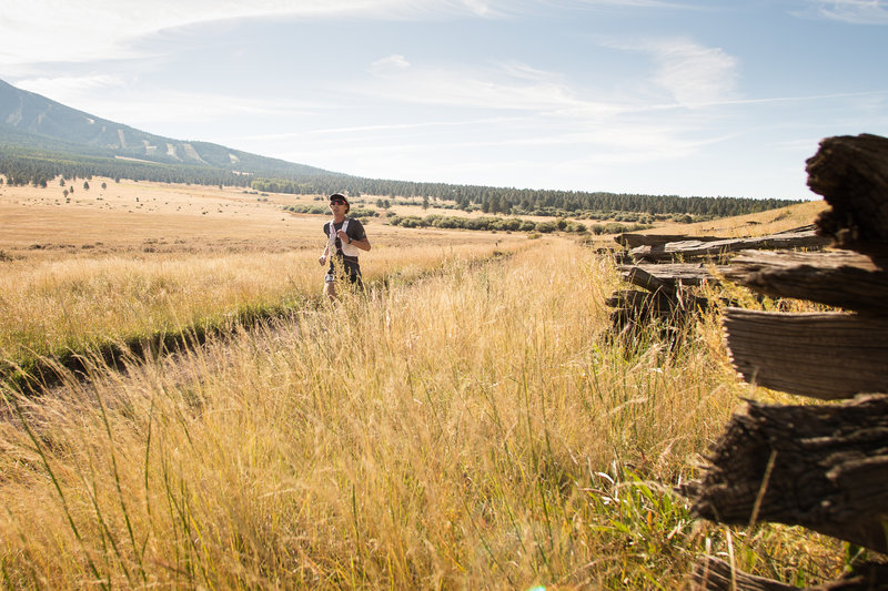 Running through Hart Prairie Preserve. Photo by Kristin Wilson.