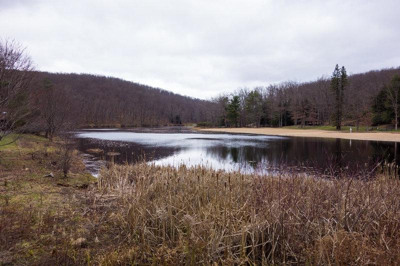 Black Moshannon Lake and the swimming beach