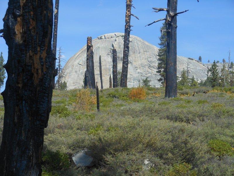 A classic Yosemite dome near the Mono Meadow Cutoff Trail.