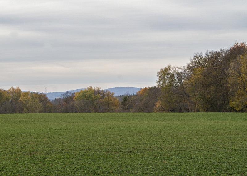View of Catoctin Mountain.