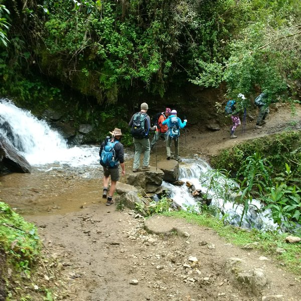We crossed some small streams, but the trail was good and it was pretty easy to do safely.