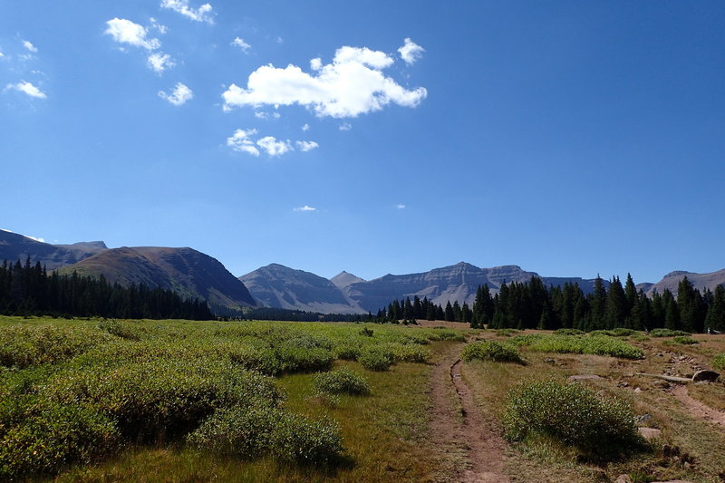 View of Henrys Fork Trail with Kings Peak in the center and the West Spur of Gilbert Peak on the left.