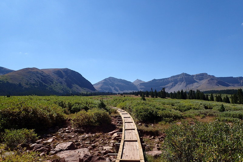 View of one of the boardwalks leading over a drainage along Henrys Fork Trail. Kings Peak is in the background at center right. Gunsight Pass is between the obvious notch at center left. The West Spur of Gilbert Peak is on the left.