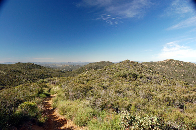 Looking south along the PCT.