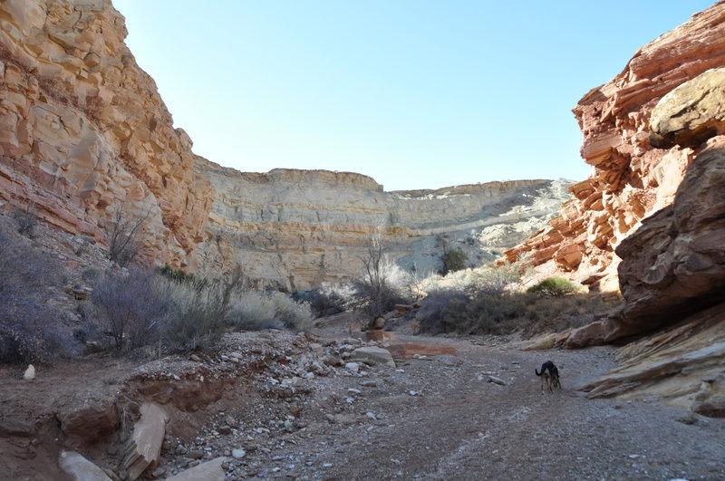 Entrance of Little Wild Horse Canyon.