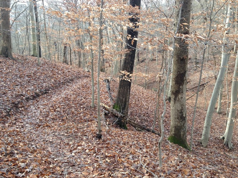 The Chimney Trail following the rolling hills.