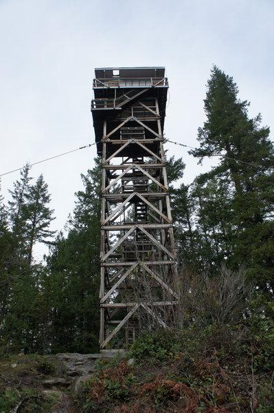 Heybrook Lookout Tower