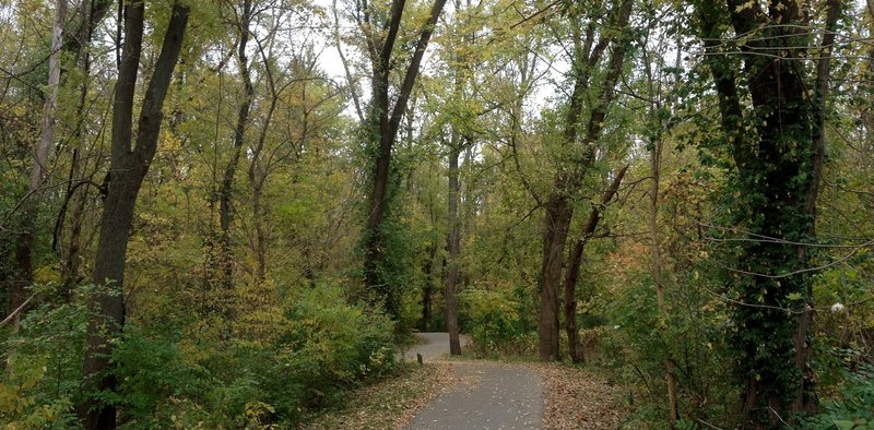 An autumn day along the Bottomland Trail.