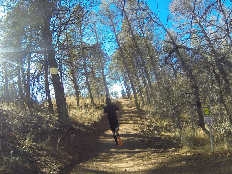 On the way up during the NORAD Trail Race!
