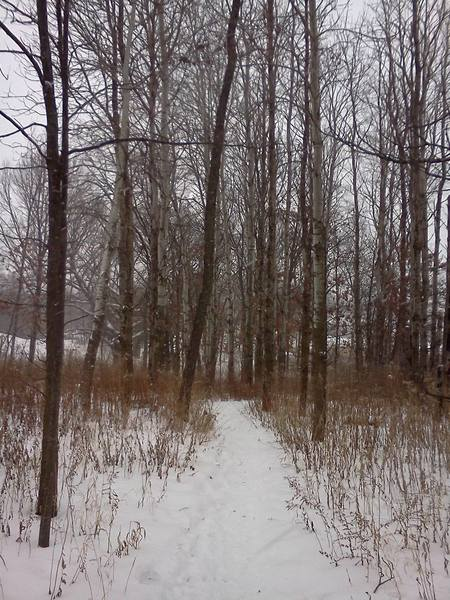 Old cell-phone image of the trail in winter.