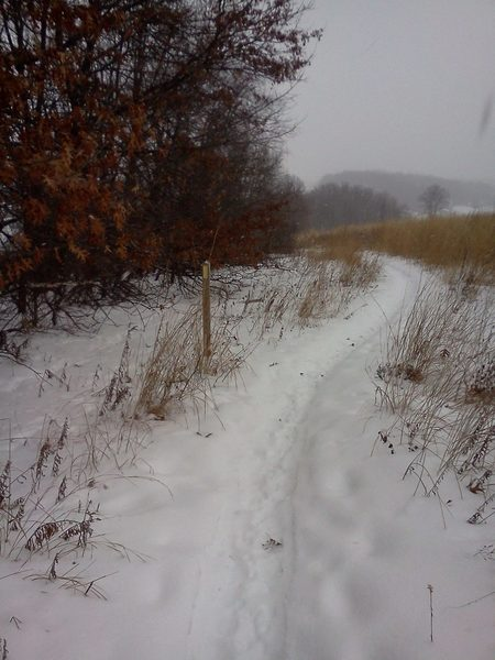 Old cell phone image of trail in winter (looking north).