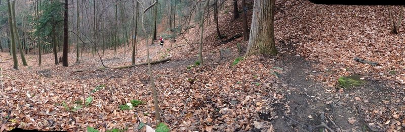 Steeper than it appears. Coming down the switchbacks, we had to be wary of rock steps that were dangerously slick.