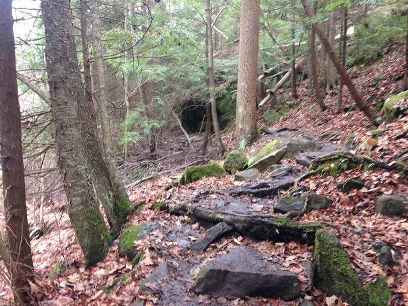 This is along Kildoo Trail. More of the same slick, wet boulders.