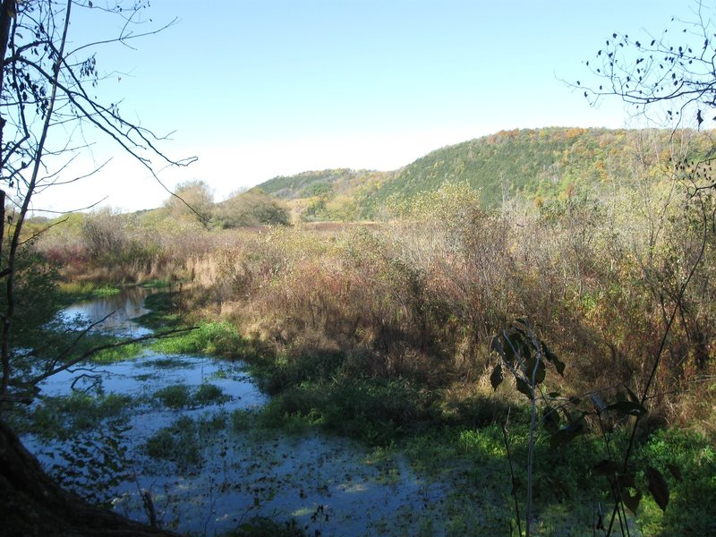 Lodi Marsh State Natural Area