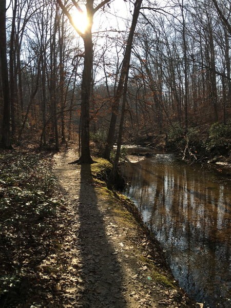 The South Valley trail has many peaceful areas along Quantico Creek!