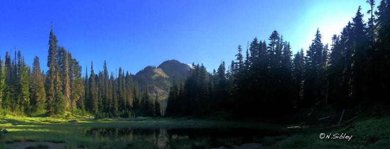 The Wonderland Trail near Pearl Creek.