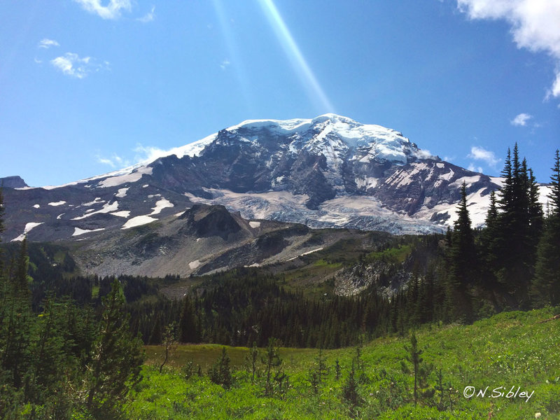 Mt. Rainier looms over the Wonderland Trail in August of 2014.