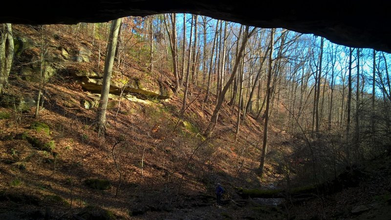 A view from inside the cave on the WCCC Short Loop, looking out over the creek-bed and valley.
