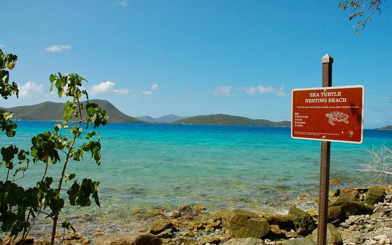 Leinster Bay Trail, Virgin Islands National Park.
