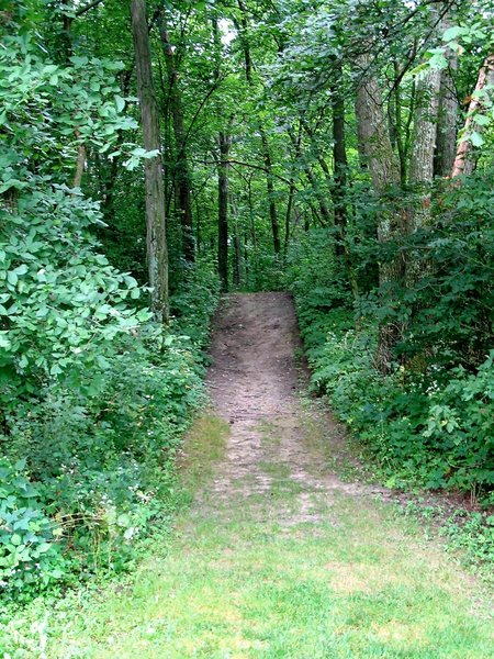 Ice Age Trail at Indian Lake County Park, Wisconsin.