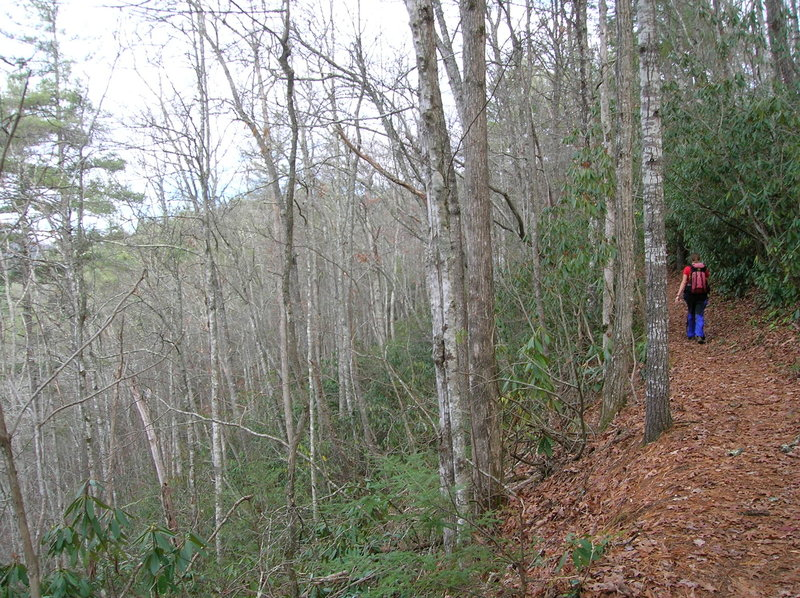 Climbing up hill at the start of the Boogerman Trail.