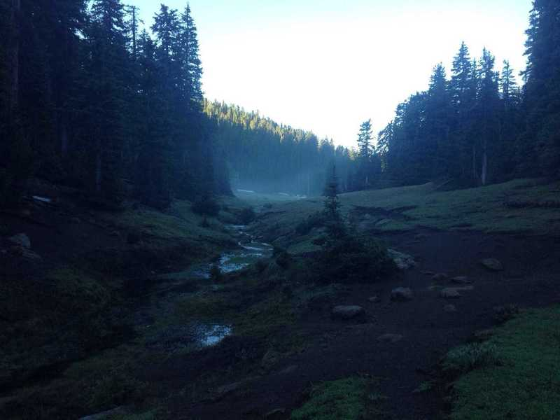 A view of the lush meadow and fog rising around Further Water, a small creek in the Pine Valley Mountains.