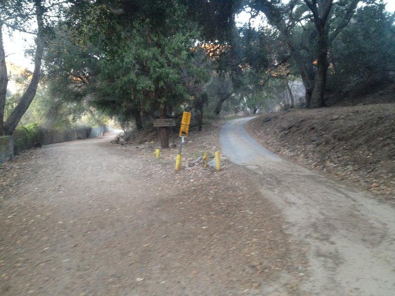 Intersection of Gabrielleno Trail (straight) and Fern Truck Trail/El Prieto (right).