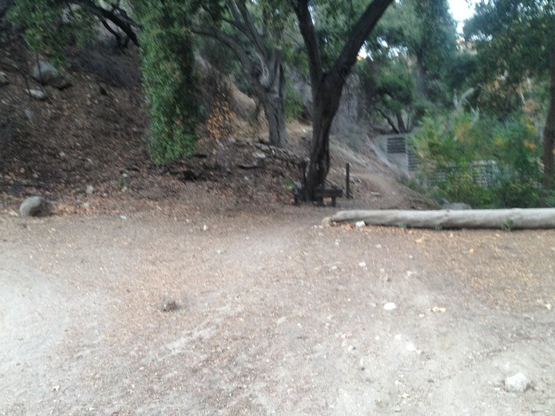 Intersection of El Prieto (right) and Fern Truck Trail (left).