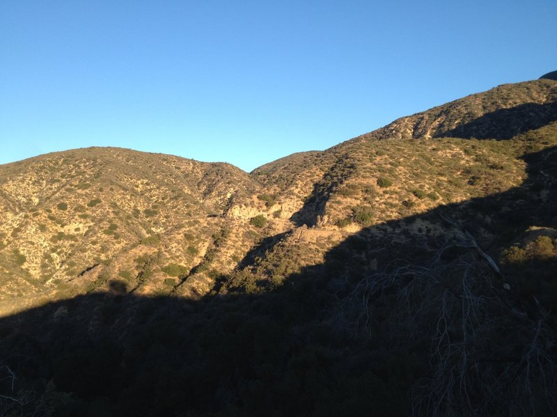 Looking up towards Brown Mountain saddle, where Fern Truck Trail and Brown Mountain Trail split.