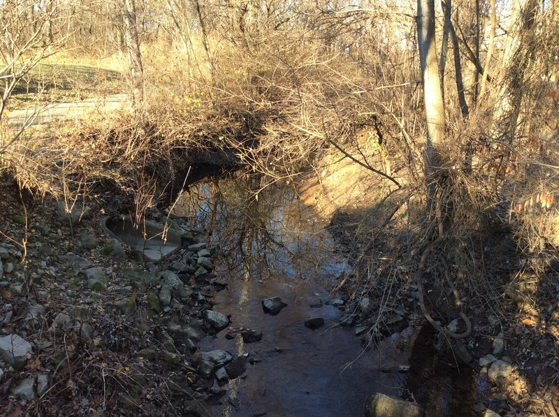 This is the creek that the trail follows.
