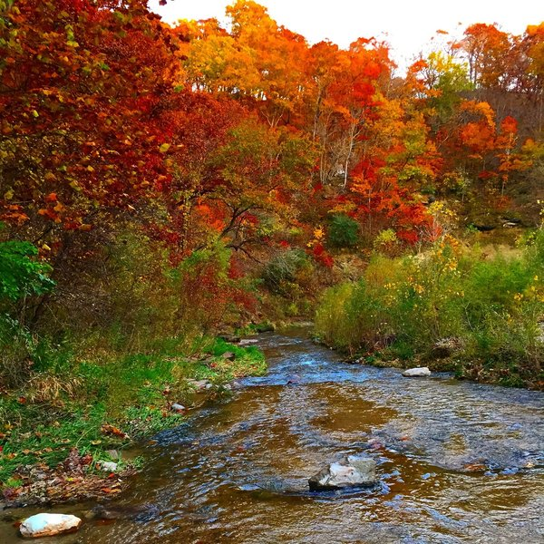 The colors of fall in the Ledges State Park are absolutely gorgeous. Definitely a great fall hike.
