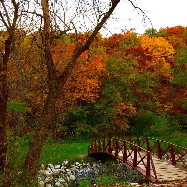 In a state with mostly flat ground and corn fields, Ledges State Park is like a little piece of Iowa heaven.