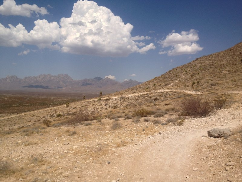 Nice views of the Organ Mountains to be had.