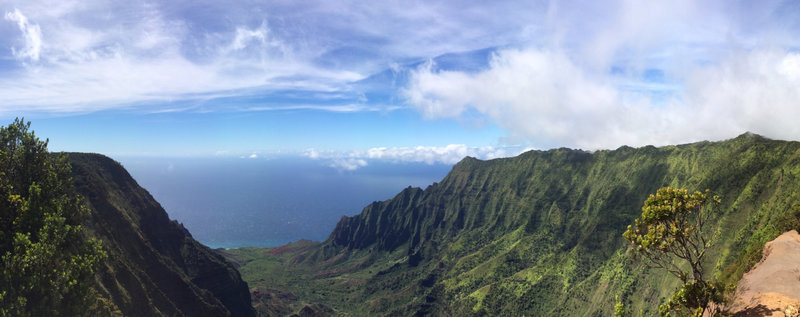Ridiculous views abound from Pihea Trail.