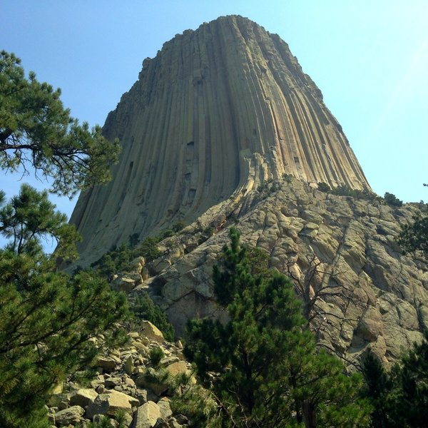 Devils Tower, as seen from the Tower Trail - Wyoming - 2015