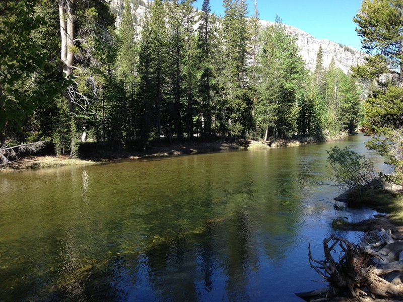 The calm spots are great for wading or fishing!