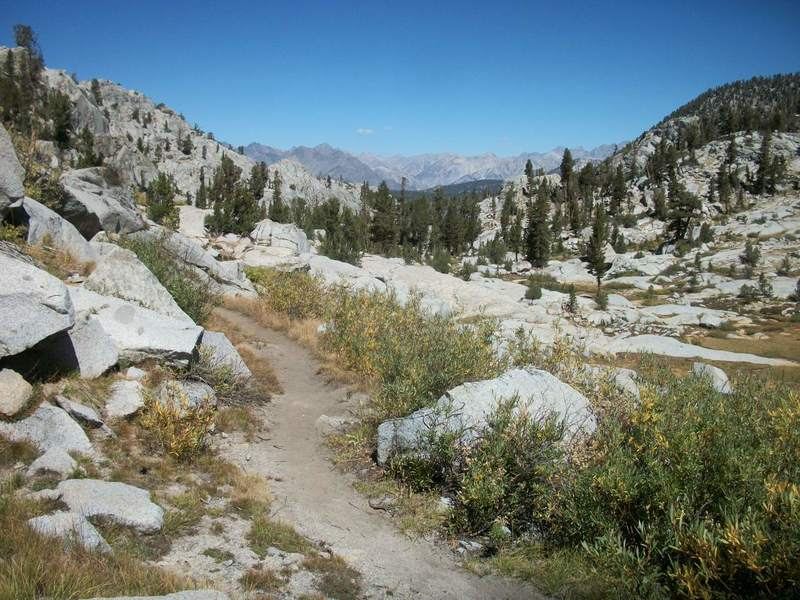 The Simpson Meadow Trail facing north toward the Middle Fork Trail from near Granite Pass.