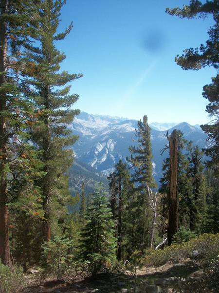 View of the Sphinx, Avalanche Pass, and Mt. Palmer from the Copper Creek Trail.